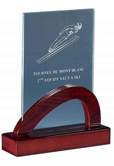 Trophée Verre & Bois Laserable 165-11