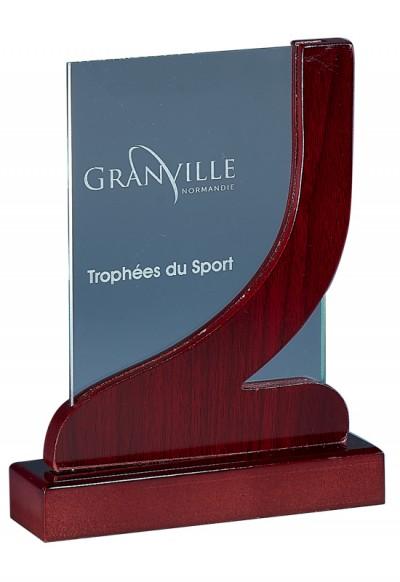 Trophée Verre & Bois Laserable 165-01