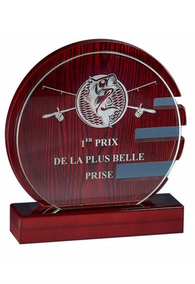 Trophée Verre & Bois Laserable 165-21