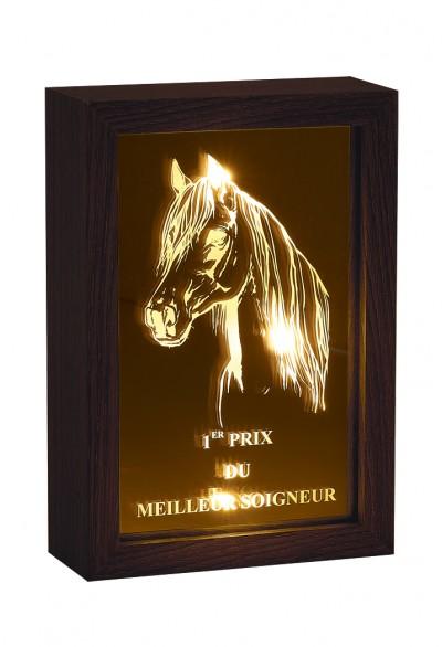 Trophée Verre & Bois Laserable 88401